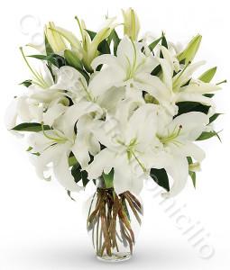 consegna-fiori-a-domicilio-bouquet_di_gigli_bianchi