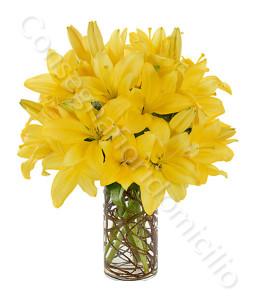 consegna-fiori-a-domicilio-bouquet_gigli_gialli