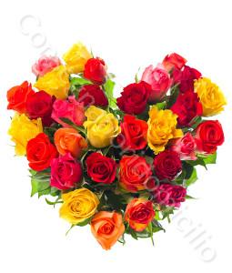 consegna-fiori-a-domicilio-cuore_di_rose_di_colori_misti