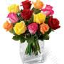 consegna-fiori-a-domicilio-12-rose-miste-arancio-rosso-rosa-giallo