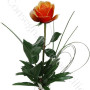 consegna-fiori-a-domicilio-rosa-arancio
