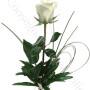 consegna-fiori-a-domicilio-rosa-bianca