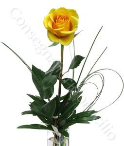 consegna-fiori-a-domicilio-rosa-gialla