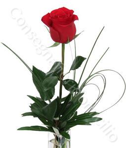 consegna-fiori-a-domicilio-rose_rosse_numero_preciso