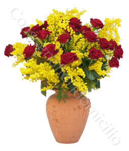 consegna-fiori-a-domicilio-roselline-rosse-mimosa