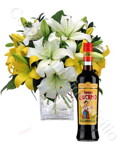 consegna-fiori-a-domicilio-amaro-lucano